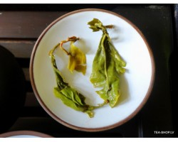 Guangxi Pi Luo Chun (green snail) chinese green tea